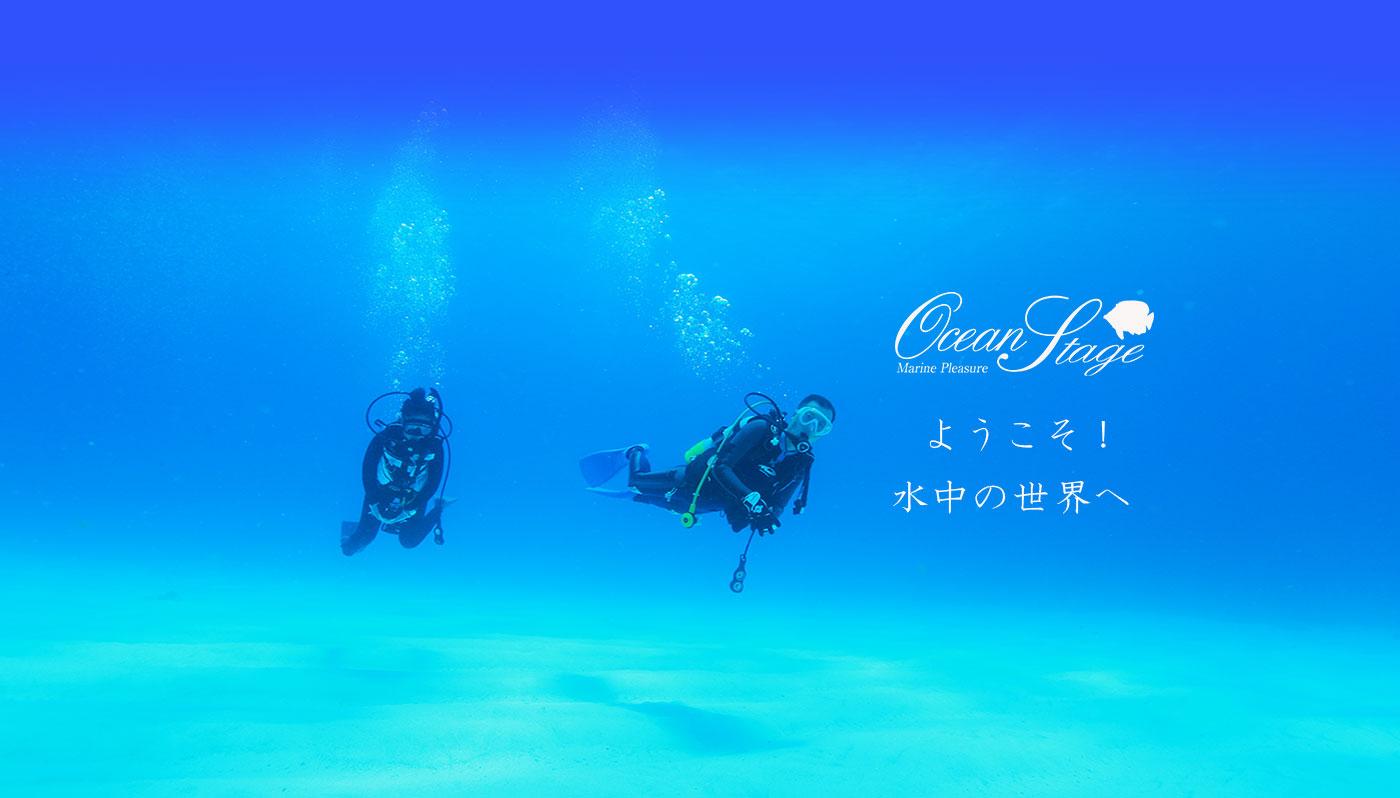 ようこそ!水中の世界へ